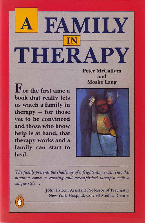 A Family in Therapy - Front Cover
